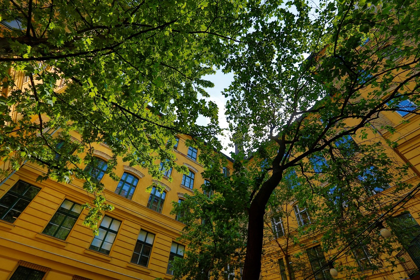 Eotvos-Lorand-Uni-Gebäude