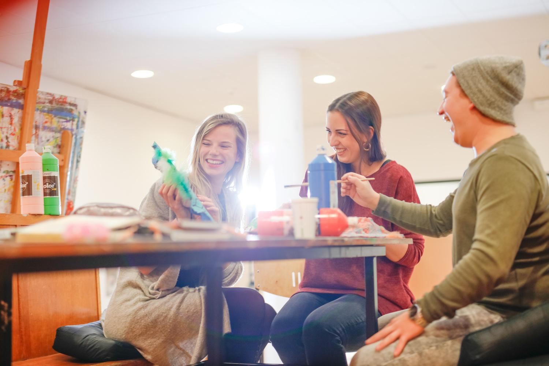 Social Work Euregio an der HAN studieren